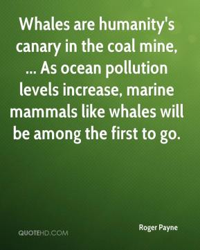 roger-payne-quote-whales-are-humanitys-canary-in-the-coal-mine-as-ocea