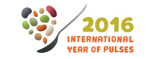 LOGO_IYP-en-high-horizontal int year pulses 2016 horizontal