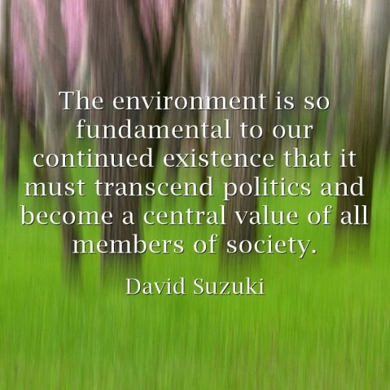 The-environmental values suzuki