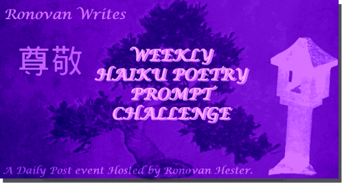 ronovan-writes-haiku-poertry-challenge-image-2016-diamonds-pearls