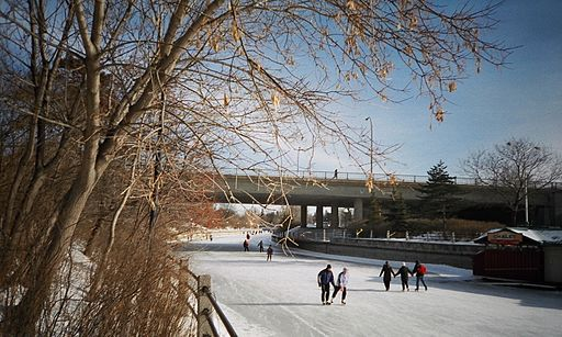 Skating_on_the_Rideau_canal_in_Ottawa.jpg