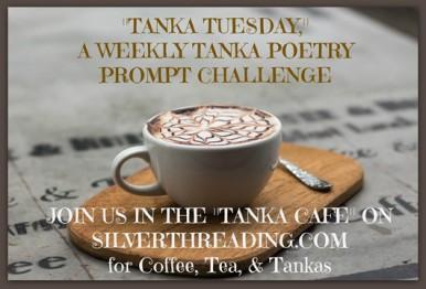 tanka-tuesday