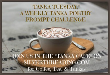 tanka-tuesday
