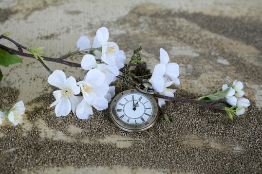 Public Domain from Pixabay https://cdn.pixabay.com/photo/2016/09/01/19/53/pocket-watch-1637392_640.jpg