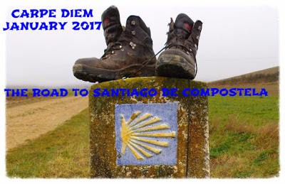 Carpe Diem January 2017 scallop trail marker.jpg